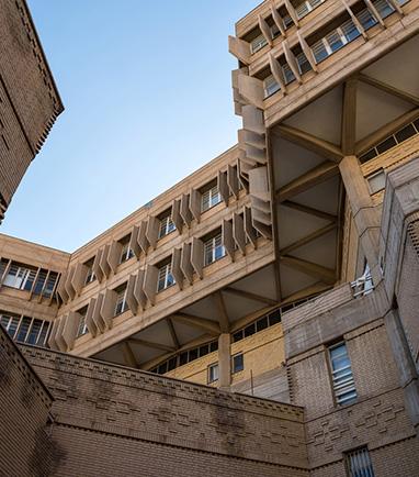 Bild: Brutal Genial und Beton(t) Sozial