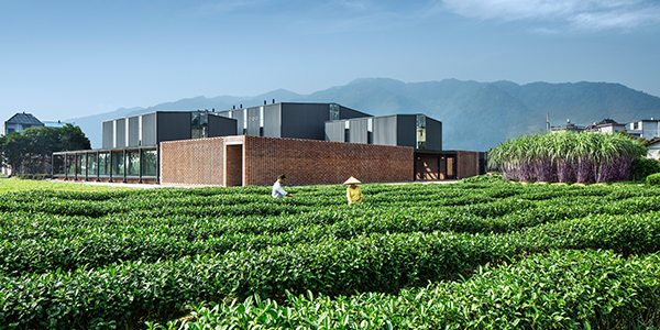 Bild: Rural Moves – The Songyang Story