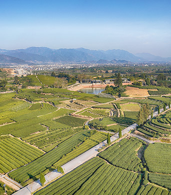 Bild: Rural Moves – New Perspectives for Rural Areas in China and Austria